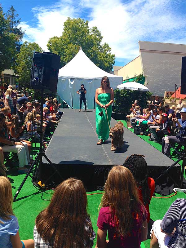 San Anselmo Art & Wine Fair 2015