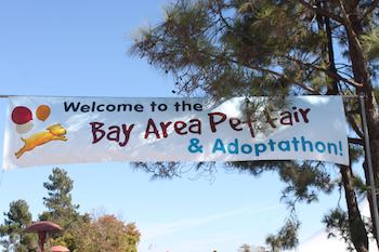 Bay Area Pet Fair and Adoptathon