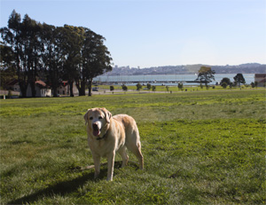 Kayla at Cavallo Point