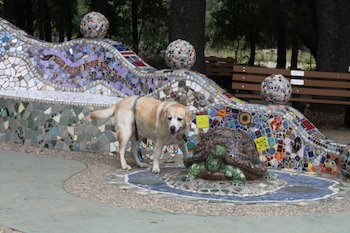 Yellow Lab With Mosaic Turtle