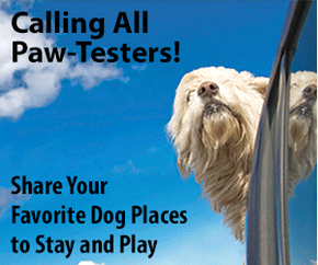 Paw Tested ad