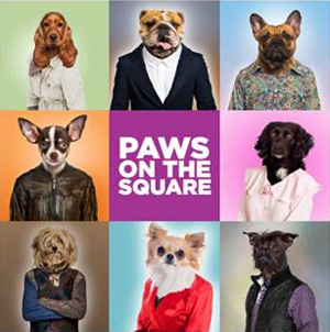 Paws on the Square Logo