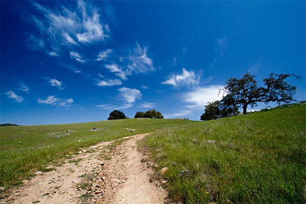 Santa Ysabel Preserves trail