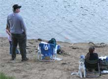 Lake Del Valle: Paradise for Water Dogs
