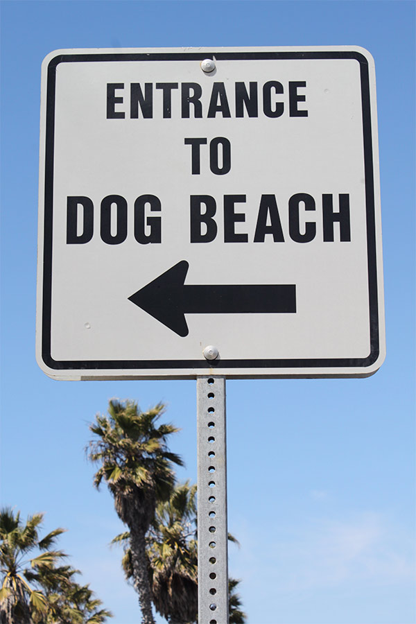Dog Beach sign