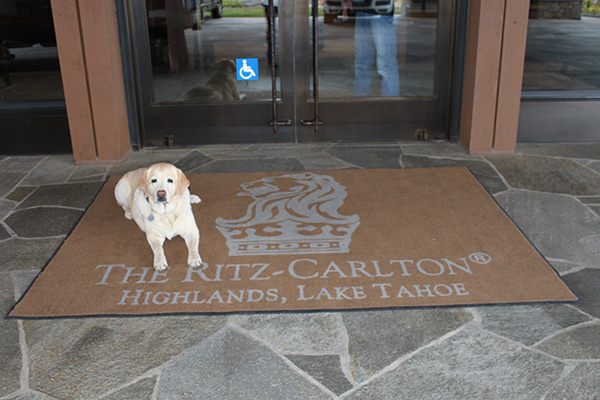 Kayla at the Ritz-Carlton