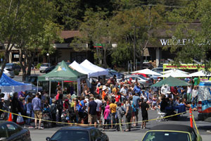 Mill Valley Dog Show 3