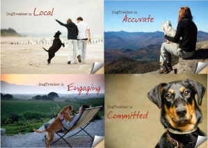 4-paw brand promise to our readers