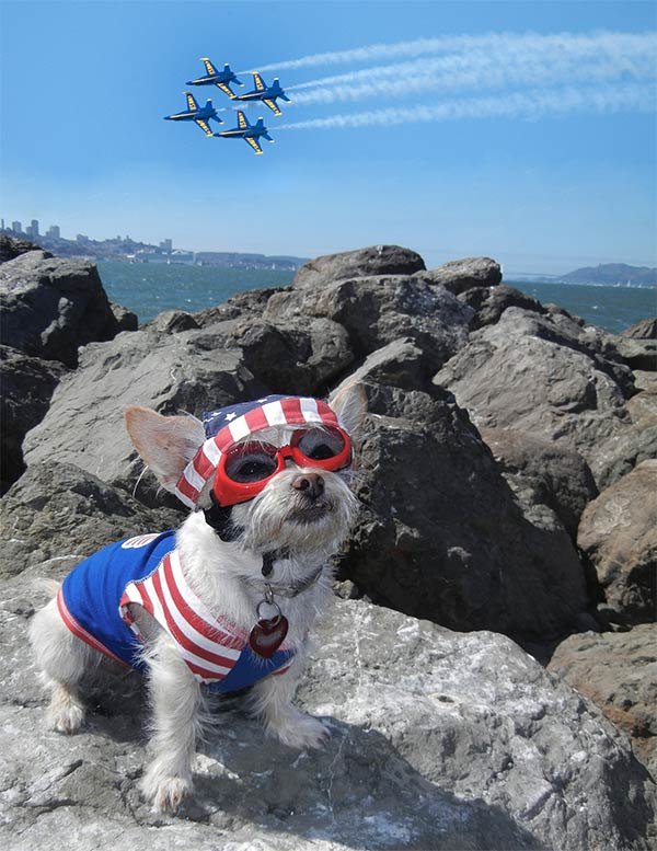 Ginger and the Blue Angels