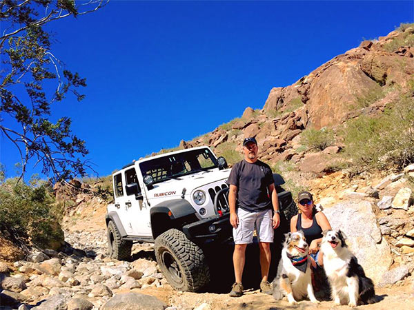 Jeepin' with the dogs