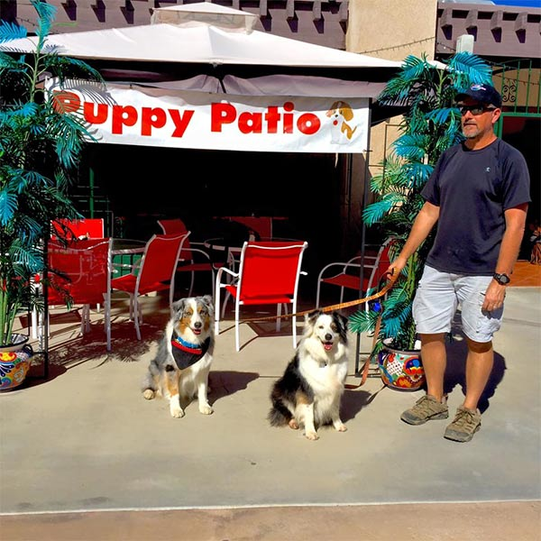 Puppy Patio at Pablito's