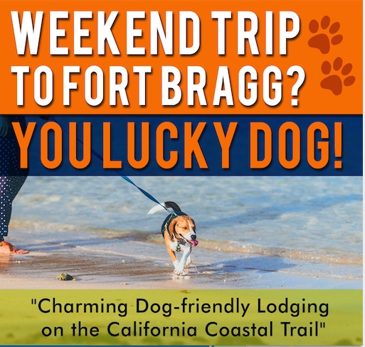 weekend to fort bragg, you lucky dog!