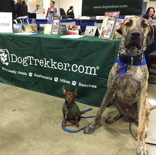 Alvin and Theodore at the Bay Area Pet Expo