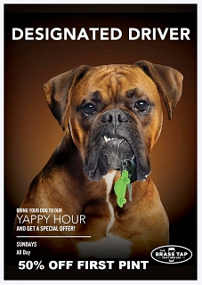 Yappy Hour at The Brass Tap