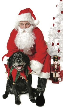 Pet Photos with Santa & Pet Adoption Fair