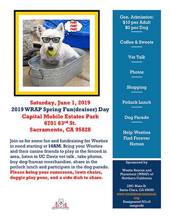 2019 WRAP Spring Fun(draiser) Day
