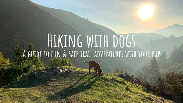 Hiking with Dogs 2019 Seminar