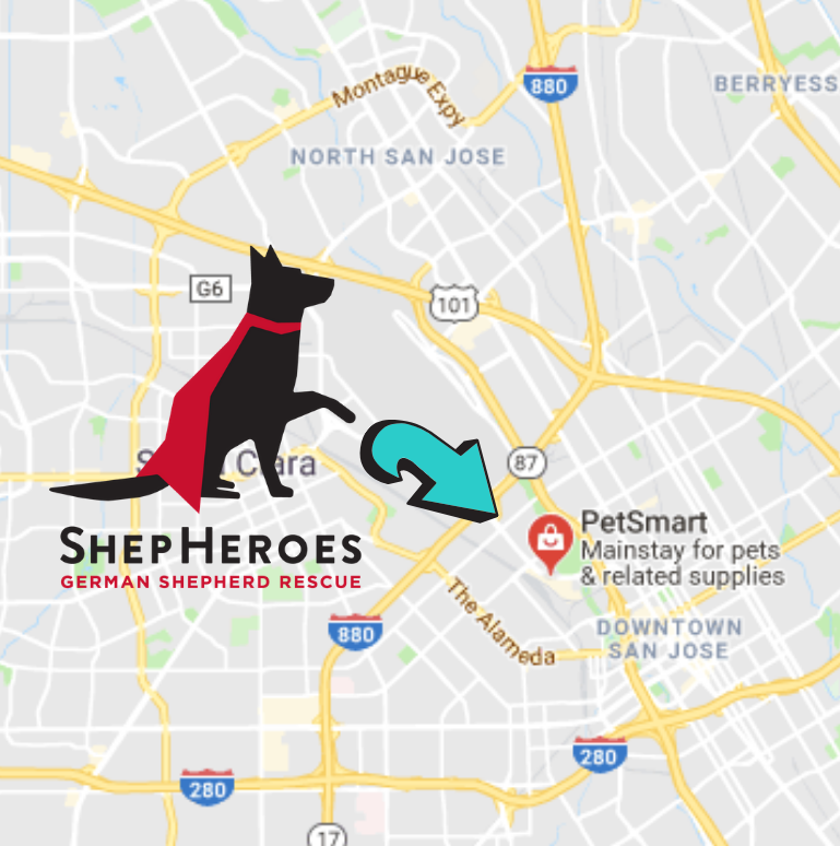 ShepHeroes in San Jose