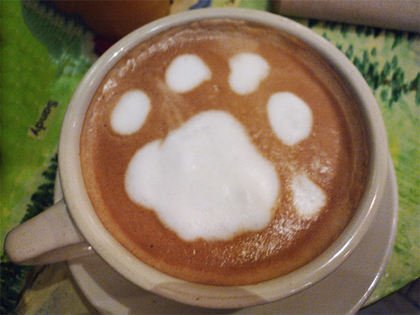 Paws for a latte? Photo Credit: Skeddy (CC)