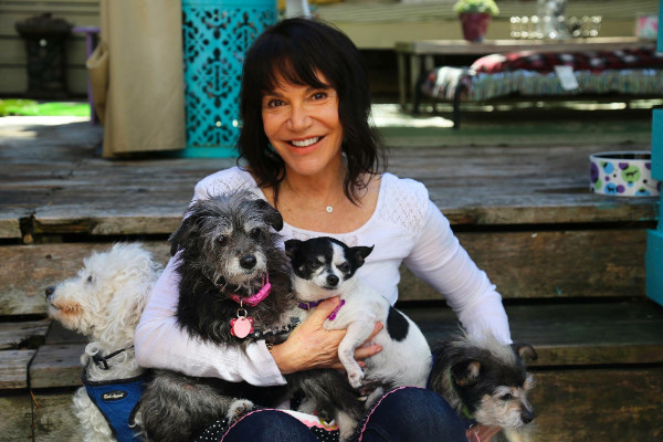 Sherri Franklin, CNN Hero. Photo Courtesy: Muttville Senior Dog Rescue