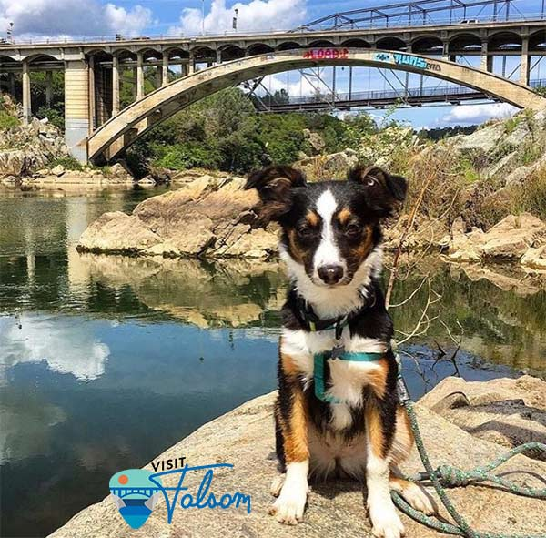 Hayley at Rainbow Bridge, Lake Natoma. Photo courtesy: @visit_folsom