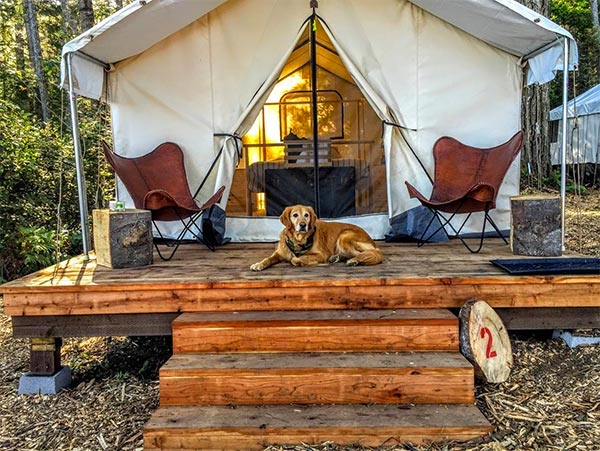 Glamping at the Mendocino Grove campground
