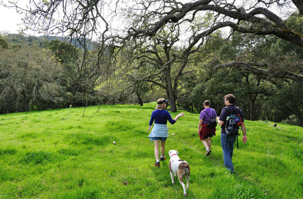 Hiking Sunol Regional Wilderness. Photo Credit: John Kay (CC)