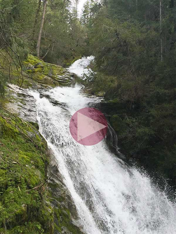 Whiskeytown Falls (Click For Video)