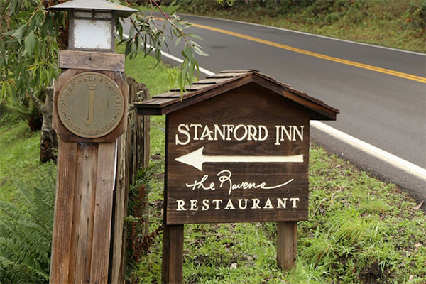 Dog-friendly Deals on the Mendocino Coast