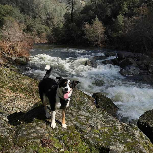 River explores Hite Cove Trail - Photo Credit: @thewildriverflow