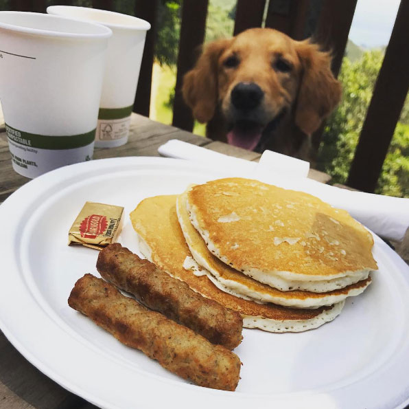 Jake is ready for some pancakes! Photo Credit: @allymcfarland