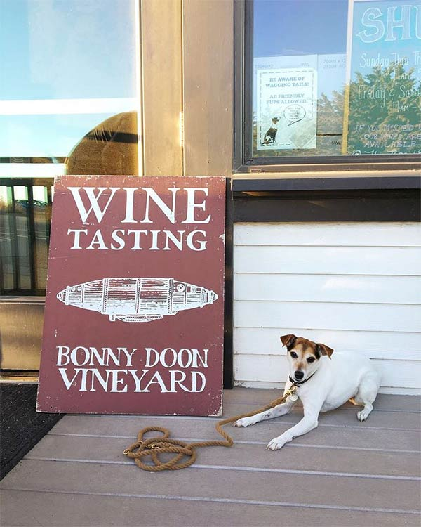 Bonny Doon Vineyard <br/> Photo Credit: @bonnydoonvineyard