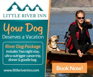 River Dogs Rule At Little River Inn