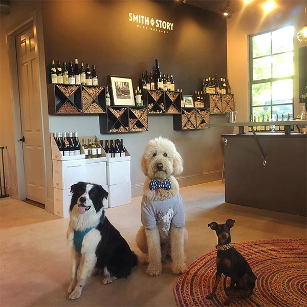 Lord Sandwich and friends at Smith Story Wine Cellars <br/> Photo Credit: sandwichthedoodle