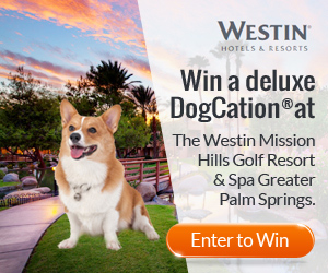 Win a Greater Palm Springs DogCation®!