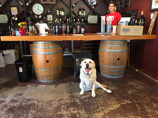 Maya, Director of Barketing, at Idle Hour Winery in Bass Lake