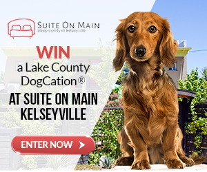 Win A Kelseyville, Lake County DogCation®