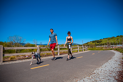 Dog-Friendly Trails in Gilroy!