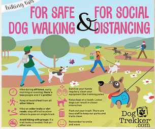 Tips for Safe Dog-Walking During the Pandemic