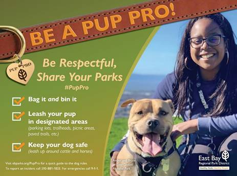 Be a Pup Pro!