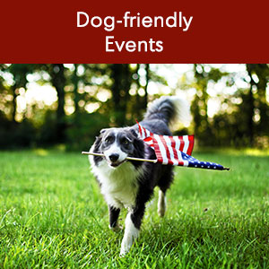Dog-friendly Events