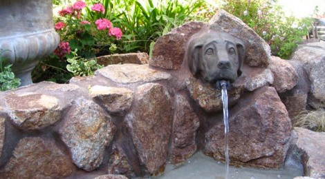 Fountain of Woof