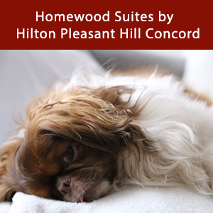 Dog-friendly Homewood Suites by Hilton Pleasant Hill Concord