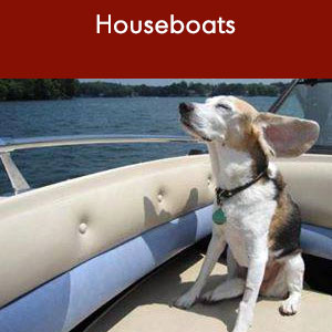 Houseboating with your dog