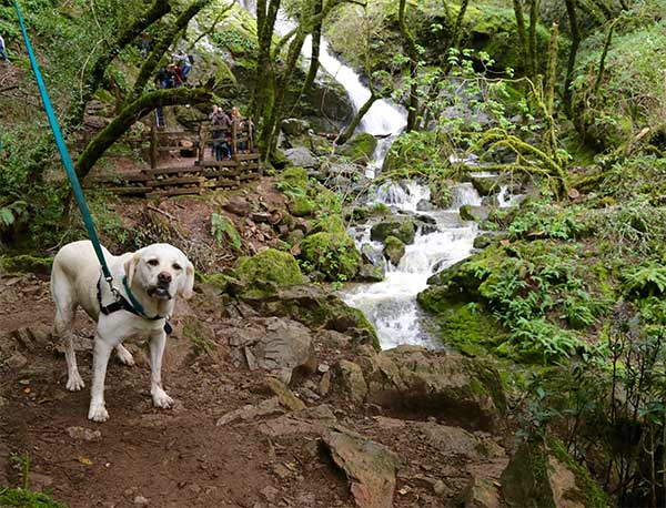 Maya at Cataract Falls