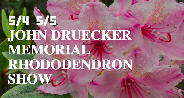 Rhododendron Show, Fort Bragg