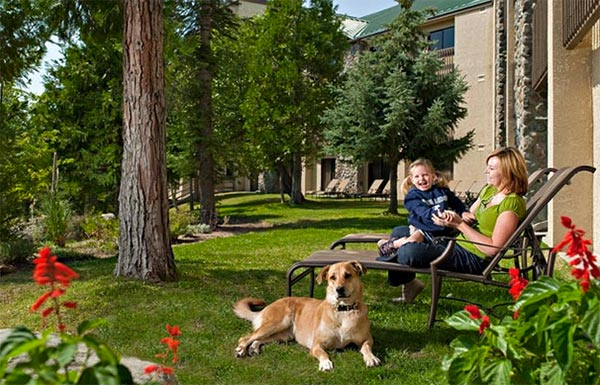 Tenaya Lodge Deluxe Pampered Pet Package