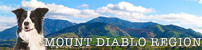 Mount Diablo Region