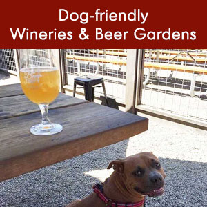 Dog-friendly Wineries and Beer Gardens